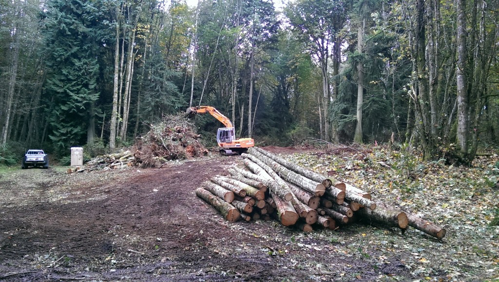 Property Clearing (2)