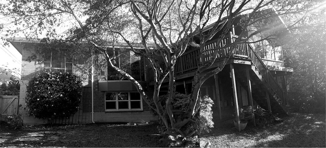 hawthorne-hills-backyard-before-courtyard-renovation